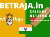 Best Online Cricket Betting Sites