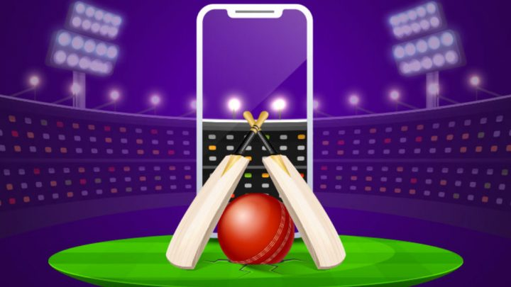 How can you play cricket betting without any risk?