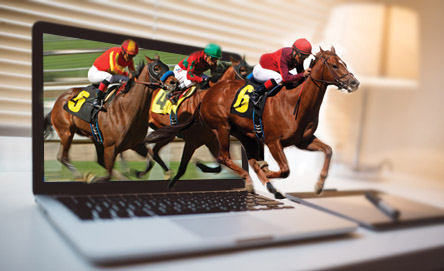 How Does Horse Racing Betting Work?